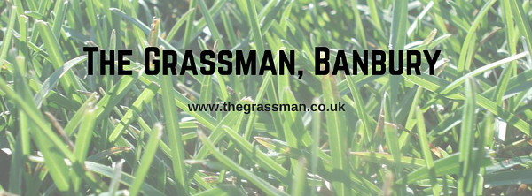 For all your grass cutting needs in and around Banbury, Oxfordshire, call the Grassman team on 0771 890 7672 or 01295 271712