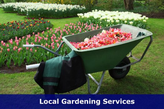 You know the feeling, don't you? The gardening needs doing! Help is at hand