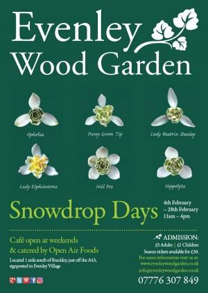 Snowdrop Days at Evenley Wood Garden