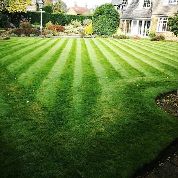 Brackley Gardeners are a small gardening company providing garden maintenance services in Brackley and surrounding villages