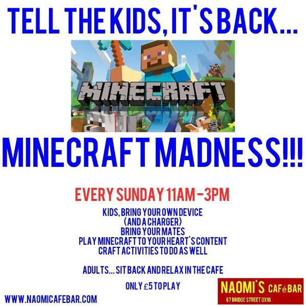 Minecraft Madness!