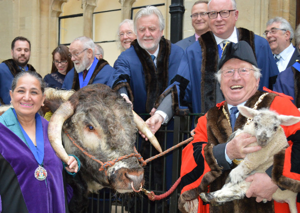 Watched by town councillors, new deputy mayor Cllr Surinder Dhesi (left) takes the bull by the horns while new mayor Cllr John Colegrave cradles one of his lambs.
