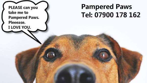 Pampered Paws in Banbury.