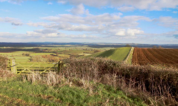 Warwickshire by Maureen Tyrrell