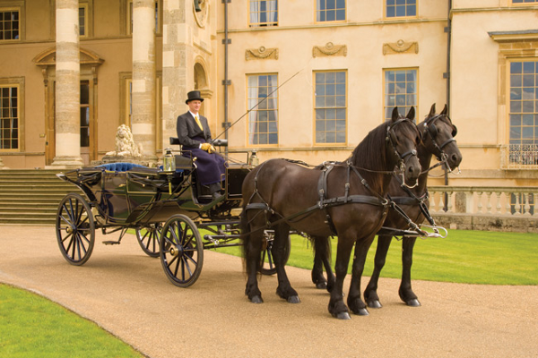A horse-drawn carriage is the perfect way to arrive at your wedding in style.