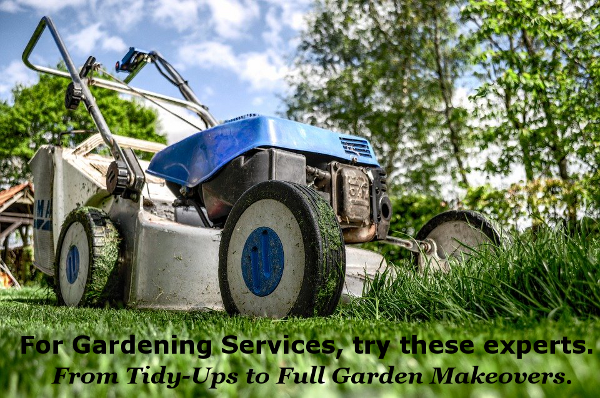 Looking for Tidy-Ups or Full Garden Makeovers?